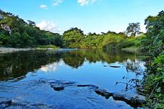 Rio Pardo Pequeno. Regio da Serra do Cabral, MG (DiogoCsar) Tags: wild minasgerais green nature rio gua river natureza paisagem reflexo riopardo