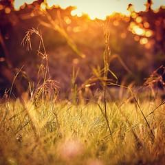 ชีวิตไม่ใช่การตามหาส่วนที่ขาดหายไป แต่มันคือการทำความเข้าใจ ว่าเราไม่ได้มีอะไรขาดหายไปเลยตะหาก #ความรักก็เช่นกัน