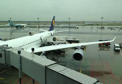 "Lufthansa Airbus A340-600 ""Mainz"" being serviced (CAUT) Tags: travel airport europa europe frankfurt aviation aeroporto traveling flughafen flugzeug aeropuerto fra francfort viajar 2014 aviacin aviacion frankfurtairport eddf caut flughafenfrankfurt"