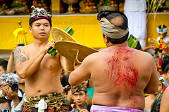 Fight Club (risdian - rian) Tags: bali men fight war locals tradition hindu kare pandan mekare
