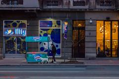 Pes [2015] (FSUBF) Tags: street serbia belgrade beograd pes srbija 2015 vraar andrejemomilovi andreje momilovi