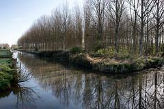 Le Marais  cot de Troarn en Normandie (johann walter bantz) Tags: blackwhite nikon normandie marais d4s