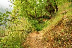 ASJ_ABC_2016001 (Joshi Anand) Tags: nepal camp india nature trek nikon base annapurna himalayas joshi anand 2016 giripremi anandjoshi