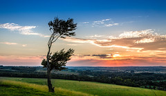 Sunset on Deacon Hill (Gary Norman) Tags: sunset summer tree landscape bedfordshire hertfordshire deaconhill