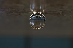 En el metro (Mar Cifuentes) Tags: glassball crystalball boladecristal metro subway subte chile santiago santiagodechile