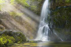 A hidden gem (Bernhard Sitzwohl) Tags: waterfall gorge water nature landscape rock green lightrays light mist fog cave wasser wasserfall fluss salza palfau wasserloch licht lichtstrahlen natur landschaft felsen