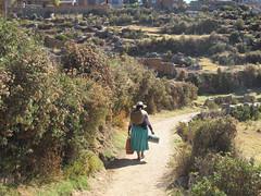 "Lac Titicaca: l'Isla del Sol <a style=""margin-left:10px; font-size:0.8em;"" href=""http://www.flickr.com/photos/127723101@N04/27984641003/"" target=""_blank"">@flickr</a>"