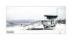 Bleached Beach (Black Dog Photography Melbourne) Tags: santa venice beach monica bleached lifesavers