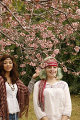 (Thais Cattani) Tags: brazil flower tree love nature colors cherry hippie