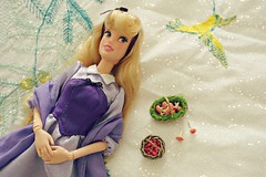 after a long day in the woods (girl enchanted) Tags: princess ds disney disneystore briarrose sleepingbeautydoll auroradoll