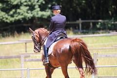 IMG_4978 (dreiwn) Tags: horse pony horseshow pferde pferd equestrian horseback reiten horseriding dressage reitturnier dressur reitsport dressyr dressuur ridingclub ridingarena pferdesport reitplatz reitverein dressurreiten dressurpferd dressurprüfung tamronsp70200f28divcusd jugentturnier
