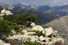 Aria (lincerosso) Tags: socotra socotraisland paesaggio landscape montagne mountains orizzonti profumi vastit bellezza armonia