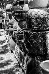 Garden pots (Thad Zajdowicz) Tags: monochrome blackandwhite bw black white everyday concept light shadow diagonal zajdowicz pasadena california availablelight lightroom outside outdoor canon eos 5dmarkiii dslr digital primelens 50mm ef50mmf12lusm