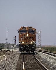 BNSF 3966 East Waiting (lennycarl08) Tags: railroad trains bnsf burlingtonnorthernsantafe escalon burlingtonnorthernsantaferailroad stocktonsub