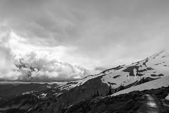 Earth vs Sky (Norman Press) Tags: blackandwhite monochrome mountain mist snow trees path trail clouds hiking backpacking outdoors wilderness mountrainier mount rainier washington park nationalpark normanpress