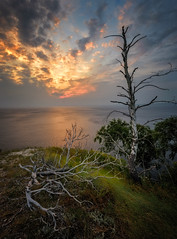 *** (Kirill Volkov) Tags: sunset mountains trees