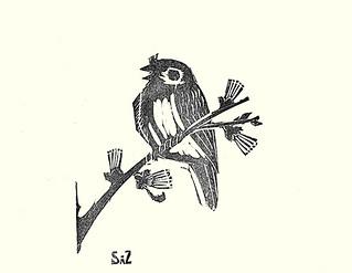 Plum and Eurasian tree sparrow