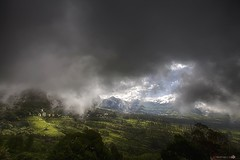 Munnar (Madhan's Photography) Tags: landscape munnar munar kerala madhansundhar madhansphotography madhans madhan nwc nature nellaiweekendclikers