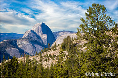 Half Dome From Olmstead Point (Mimi Ditchie) Tags: halfdome olmsteadpoint yosemite yosemitenationalpark landscape getty gettyimages mimiditchie mimiditchiephotography