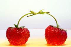 Strawberries in love (radebg) Tags: single square flat two dessert fresh raw modern concept ripe dish honey tableware plate style red small object whitebackground food background studio design contemporary fruit ceramic shot strawberry nobody porcelain one love