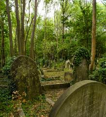 18-Highgate Cemetery East - Graves 4-1048 (md2399photos) Tags: 11aug16 dickwhittingtonscat highgatecemetery karlmarx london notesonblindness stpancras themeetingplacebypaulday