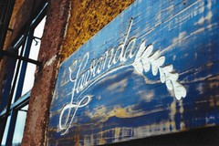 Best chilaquiles, Lavanda Cafe (Nanxsie) Tags: restaurant food chilaquiles mexico sanmigueldeallende foodie