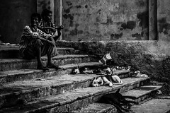 ||Companion|| (SouvikMetiaPhotography) Tags: people sitting dog stair streetphotography streetphoto blackandwhite monochrome kolkata india asia flickr portrait travel documentary