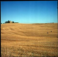 Fields Of Tuscany (Jordi Aragon) Tags: hasselblad 500cm planar8028 filmrocks 120 6x6 mediumformat square analog fujipro160ns epsonv700 film italia toscana italy valdorcia bellitalia