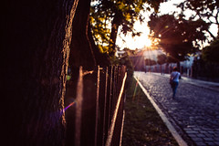After School Special (ewitsoe) Tags: fence fencefriday flare poznan poland woman walking autumn light spiderweb road distance evening sunset sun sunny sunflare cityscape urban city lady wlaking pedestrian ewitsoe canon eos6d hff