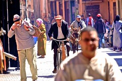 Marrakech / Marokko (_dreamseller_) Tags: africa street city people sun man guy tourism bike spring leute zoom market strasse crowd streetphotography donkey menschen morocco stadt marrakech afrika tele fujifilm mann marrakesh markt souks sonne cultures fujinon velo fahrrad marokko esel frühling marrakesch xf kulturen 55200mm xe1 fujifilmxe1 fujinonxf55200mm strassefotographie