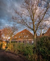 20150131-1702-45 (donoppedijk) Tags: nederland noordholland uitdam