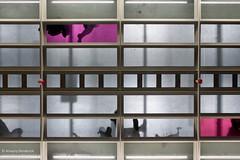 ADH PGSP 2015-03-08 048.jpg (Amaury Henderick) Tags: belgië belgique belgium gand gent ghent projectgentsintpieters pgsp sintpietersstation station gare gentsintpieters nmbs sncb construction bouw werf chantier constructionsite stadsvernieuwing urbanisme urbanism development ontwikkeling eurostation
