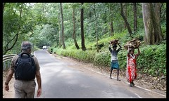 Athirapalli (indianature13) Tags: india nature forest rainforest kerala tribal jungle westernghats indigenouspeople chalakudy 2014 athirapally adivasi athirapalli indianature chalakudyriver athirapallifalls adivasikerala