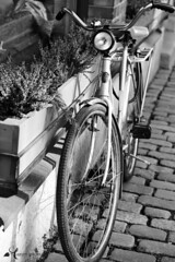 Bike stand (Asarum Images (asarumimages.weebly.com)) Tags: blackandwhite monochrome bike standing canon cycling sweden gothenburg cycle goteborg asarum canonphotography canoneos6d asarumimages