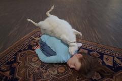Yoga (elisachris) Tags: art animal yoga child kunst kind relaxation ricohgr tier entspannung garbhasana stellungdeskindes
