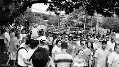 Impeachment Dilma Rousseff - Porto Alegre/Brazil (Josadaik Alcntara Marques) Tags: brazil people blackandwhite bw southamerica brasil photography justice verdeamarelo symbol portoalegre pb bn brazilian fotografia bandw mbl protests brasileiro pretoebranco riograndedosul sul corruption corrupo impeachment investigation petrobrs patriotas patriotismo justia blancetnoir impunidade petrleo fraude toffoli mensalo multido josdirceu revolta supremotribunalfederal protestos partidodostrabalhadores lavajato corruptos dilma investigao againstcorruption acioneves oposio dilmarousseff trabalhadorbrasileiro escndalos marcosvalrio foradilma forapt bolsonaro foracorrupo contracorrupo joaquimbarbosa vemprarua petrolo contraesquerda diadeprotestos contraimpunidade againstdilma againstgovern forarennan foratoffoli ptriaamanda passionshots