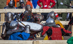 Vanaja Tournament 2015 (Wellu Virtanen) Tags: castle sport suomi finland medieval tournament international combat hmb thriathlon 2015 hmeenlinna hme polearm vanaja bohurt buhurt vanajatournament