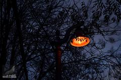 Providencia Salvador (AndresDonosoAguilera_WolfPaint) Tags: nocturna santiagocentro crepsculo providenciasalvador