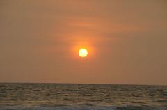 Varkala_sunset_5855 (Manohar_Auroville) Tags: sunset sea sun india beach beauty birds kerala varkala manohar luigifedele