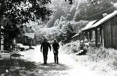 The road between cabins at Albion (PUC Special Collections) Tags: california coastal mendocino 1960s norcal 1970s biology tidepools puc albion estuaries mendocinocounty pacificunioncollege albionfieldstation albionbiologicalfieldstation pucbiologydepartment