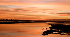 veldrif winter1 (WITHIN the FRAME Photography(5 Million views tha) Tags: sunrise westcoast estuary landscape horizon shadows light warm southafrica wide nature silhouettes flamingoes fuji xt1 reflections