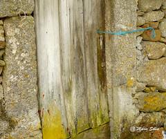 guas Frias (Chaves) - ... o fio azul ... (Mrio Silva) Tags: guasfrias aldeia chaves trsosmontes portugal ilustrarportugal madeinportugal mriosilva monforte riolivre 2016 julho vero fotografias fio azul porta