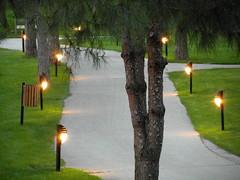 shining path (kexi) Tags: lights evening shining path green pines turkey samsung wb690 may 2015 instantfave
