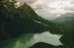 Peyto Lake (A Wild Berry Picnic) Tags: summer lake canada mountains rockies bc alberta banff peyto