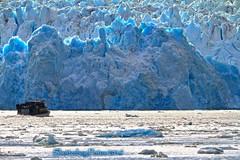 Wall of Ice (Shutterbug Fotos) Tags: alaskacruise cruise endicottarm water glacier nature beauty ice wallofice dawesglacier blue iceblue blueice electricblue wall icewall alaska insidepassage