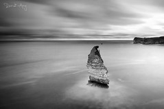 Tunak (Randi Ang) Tags: twa gunung tunak lombok indonesia landscape seascape long exposure photography monochrome black white bw randi ang fuji fujifilm xt10 xf1024mm 1024mm