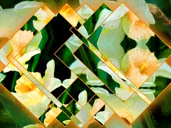 Quilted Narcissus (GeminEye27) Tags: narcissus fragment topazimpression