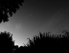 Iridium Flare (graemes83) Tags: longexposure sky bulb night stars pentax flare vivitar iridium startrail rawtherapee