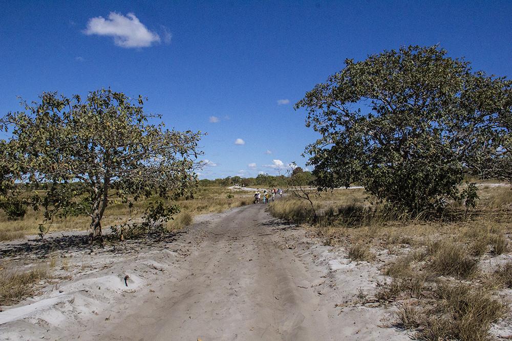 Caminho Casa da Dona Geralda ao Córrego do Garimpeiro