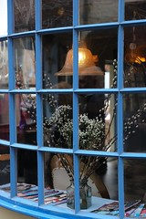 Inviting Window (smitchelrific) Tags: shop glass display pussywillows blue bow window whitby